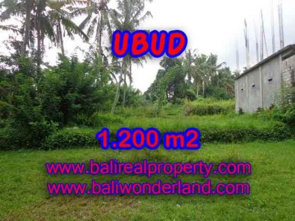 DIJUAL TANAH MURAH DI UBUD BALI TJUB399 - KESEMPATAN INVESTASI PROPERTY DI BALI
