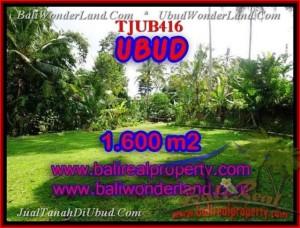 TANAH di UBUD DIJUAL 16 Are di Sentral Ubud