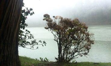 Brasil - Gramado - Laguna negra