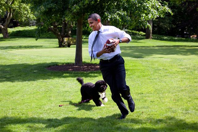 Obama juega a fútbol americano con Bo.