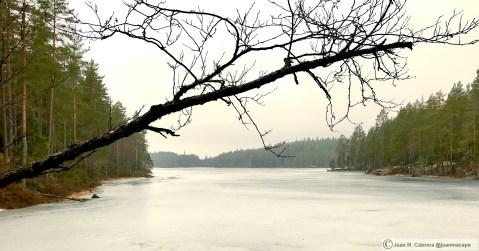 Parque nacional Isojarvi