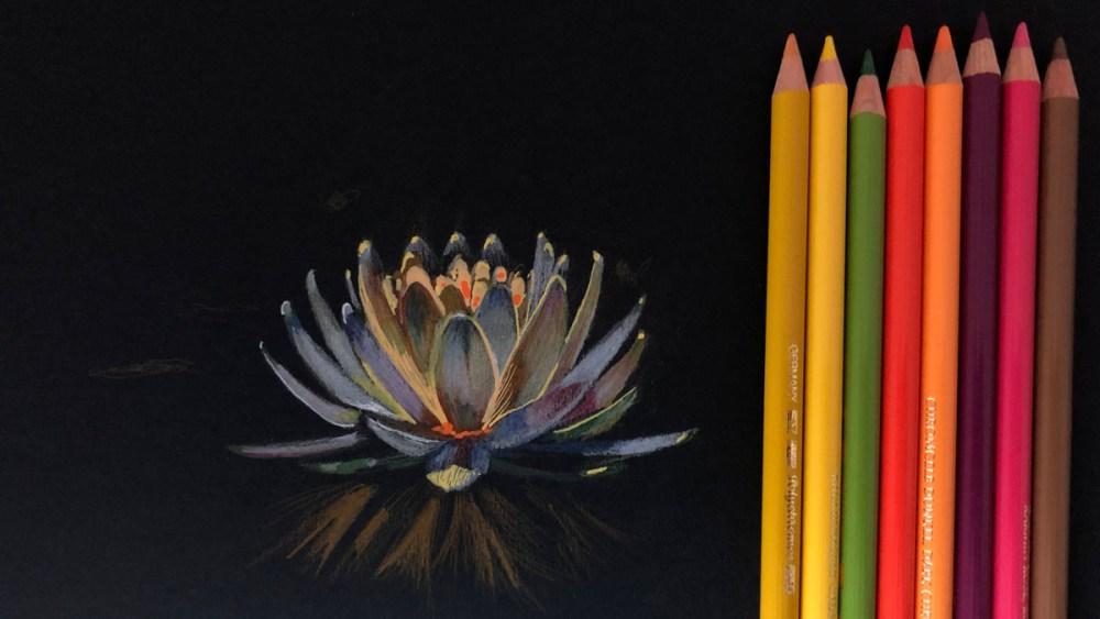 La imagen tiene un atributo ALT vacío; su nombre de archivo es flor-en-negro.jpg