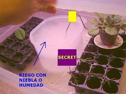 propagador de semillas riego con niebla