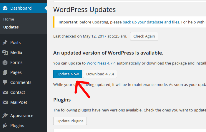Update WordPress Website