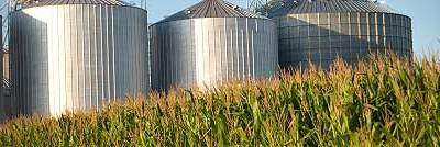 Long-term pick Bunge gets motivated