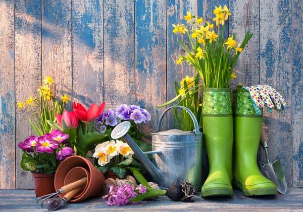 garden for health+boots