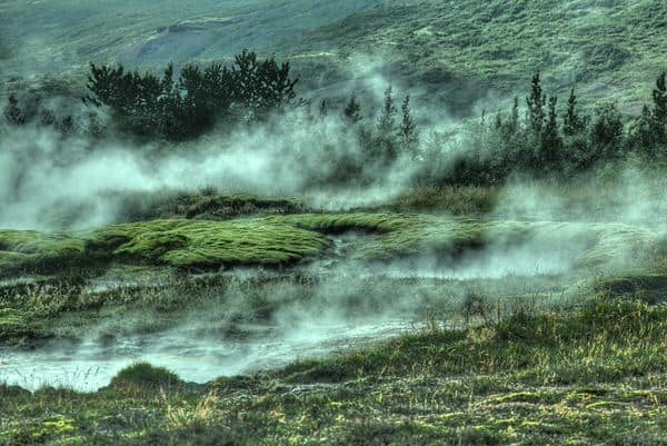 selecting medical marijuana+foggy-field