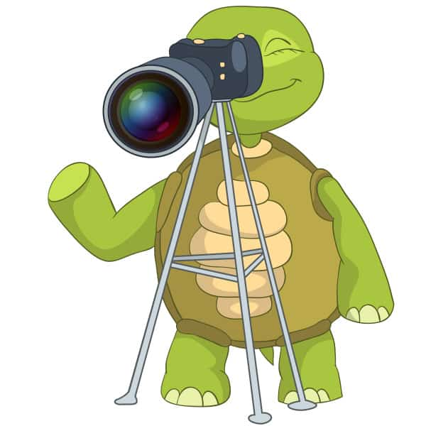 tech-to-record-family-storiesTechie-Turtle-tripod