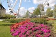 Jubilee Gardens flowerbed