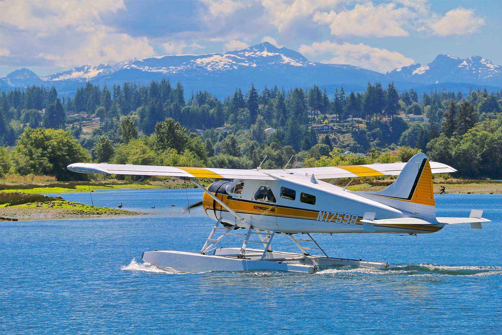 property for sale vancouver island - plane2-