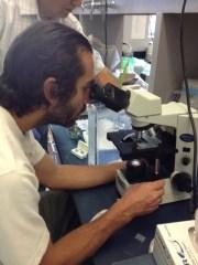 Dr. Greg Bonito uses a microscope to identify fungi