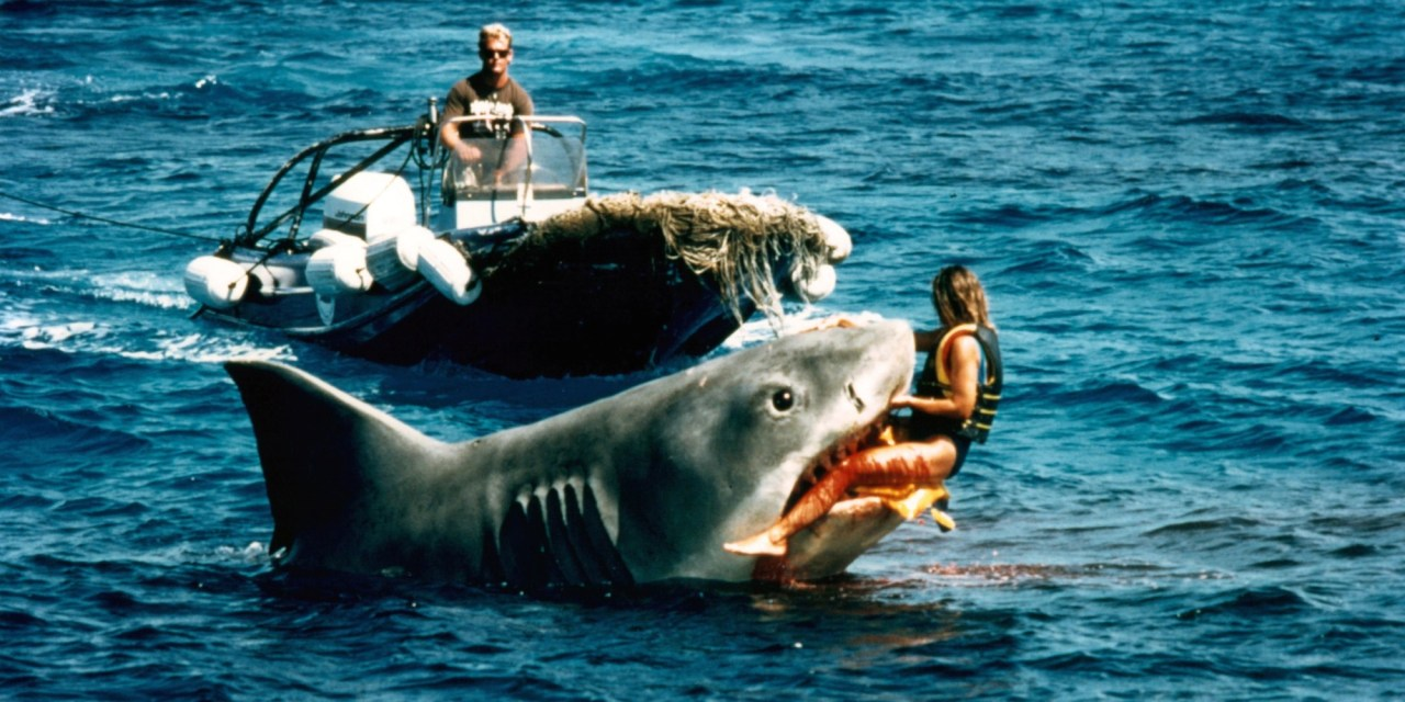 Tubarão: PG nos EUA, 14 no Brasil. RISOS. :D