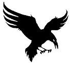 raven_small