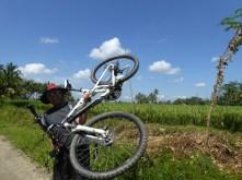 Vélo dans les rizières d'Ubud