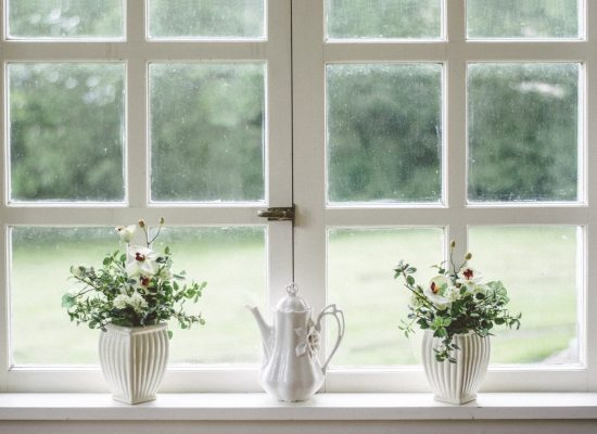 window sill with plants