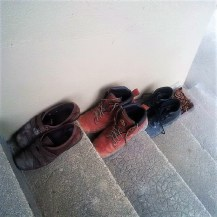 Judi Castille shoes