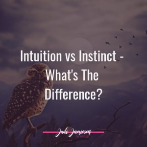 Intuition vs Instinct