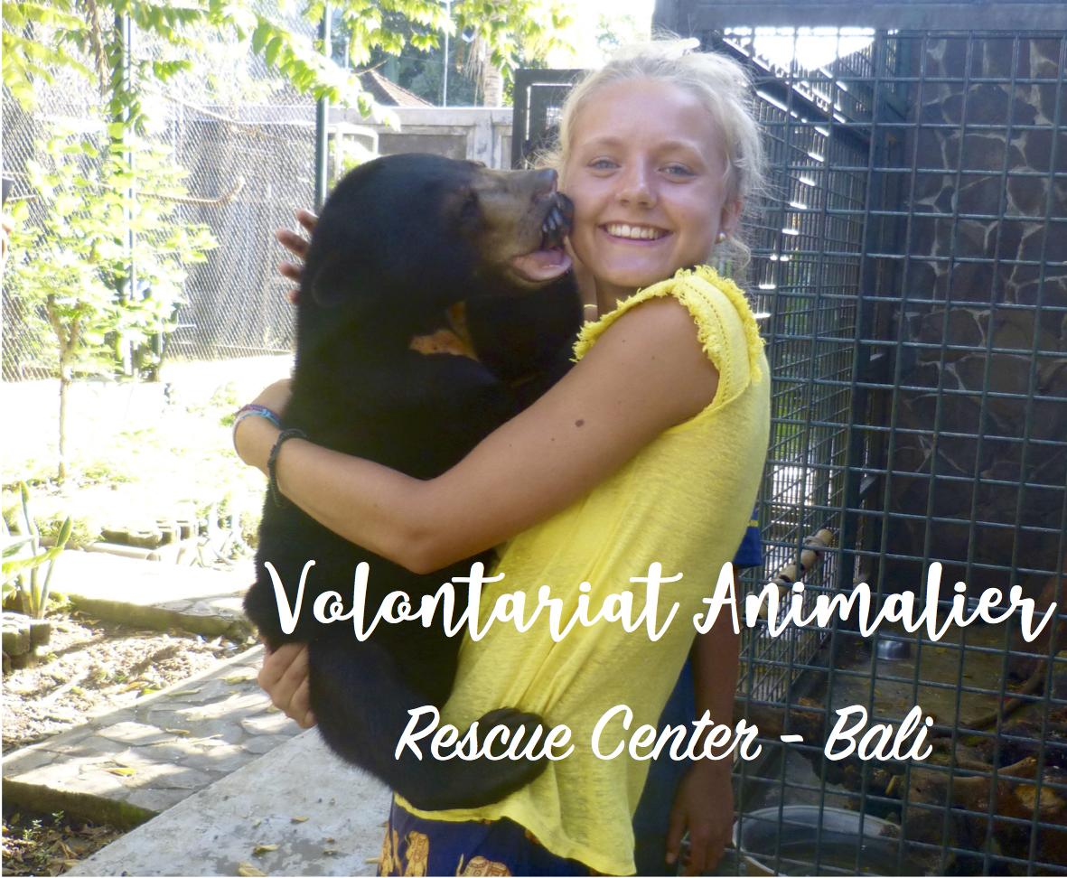 Volontariat animalier au Rescue Center de Bali