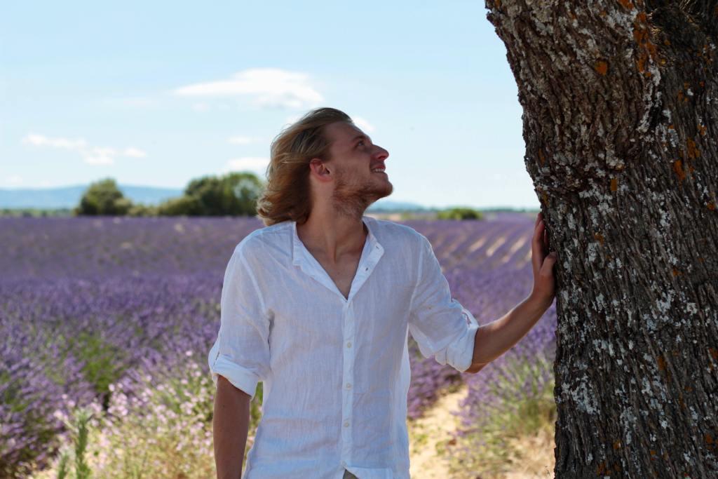 etienne arbre champs lavande valensole