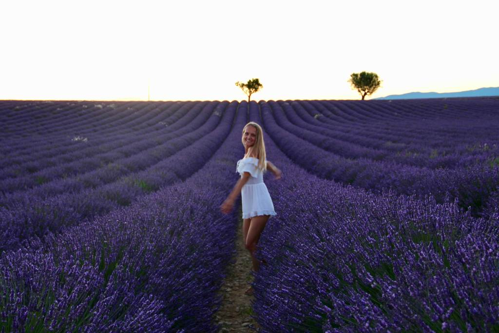 judith voyage champs lavande soir valensole