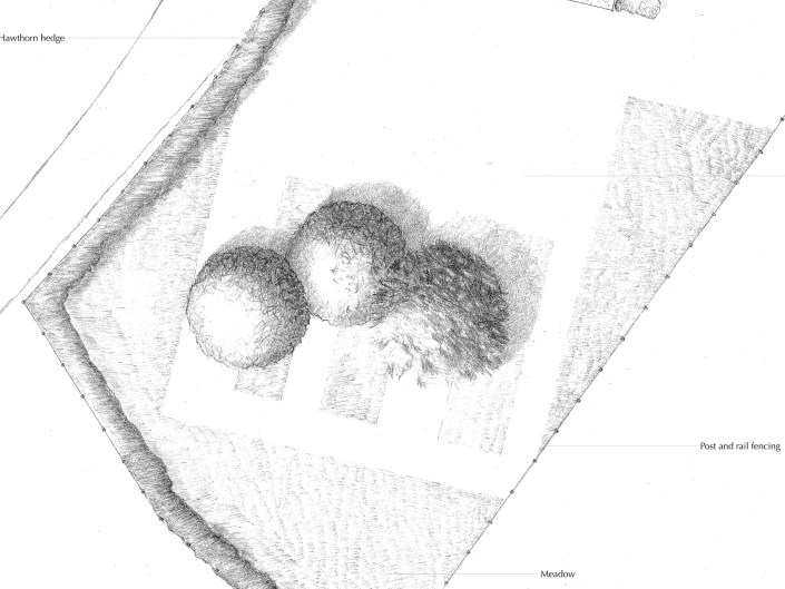 Modern meadow hand drawn masterplan