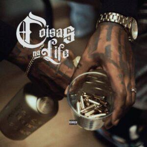 2021 BAIXAR MP3 Coisas na Life Plutonio