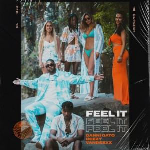 Danni Gato x Deezy - Feel It (feat. Vandeexx) [2021] Baixar mp3