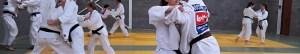 Judoka's die trainen.