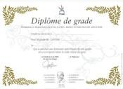 DIPLOME DE GRADE