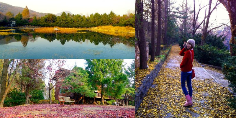 BCJ碧草池文化樹木園\德魯納酒店、馬成的喜悅、她很漂亮等多部韓劇拍攝場景之廬山真面目!