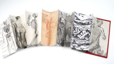 Old Bones, Detail of Inside Pages