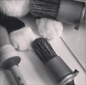 teddyboy paint brushes