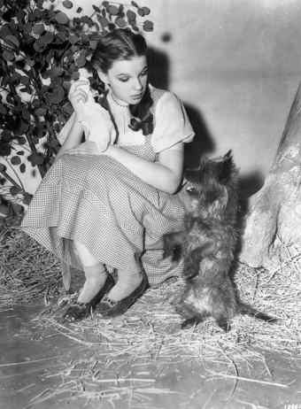 Judy-Garland-and-Toto