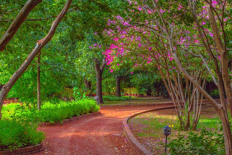 https://i2.wp.com/judyv.smugmug.com/Clark-Gardens/Clark-Gardens-2012/i-27RdhT6/0/L/JVP_20120831_ClarkGardens9840-L.jpg