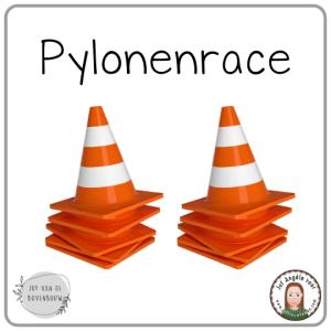 Bewegend leren Pylonenrace