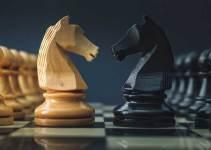 Caballo-de-ajedrez