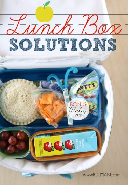 Lunch-Solution-Ideas-DIY-Snack-Butterflies-16-700x1011(pp_w670_h967)