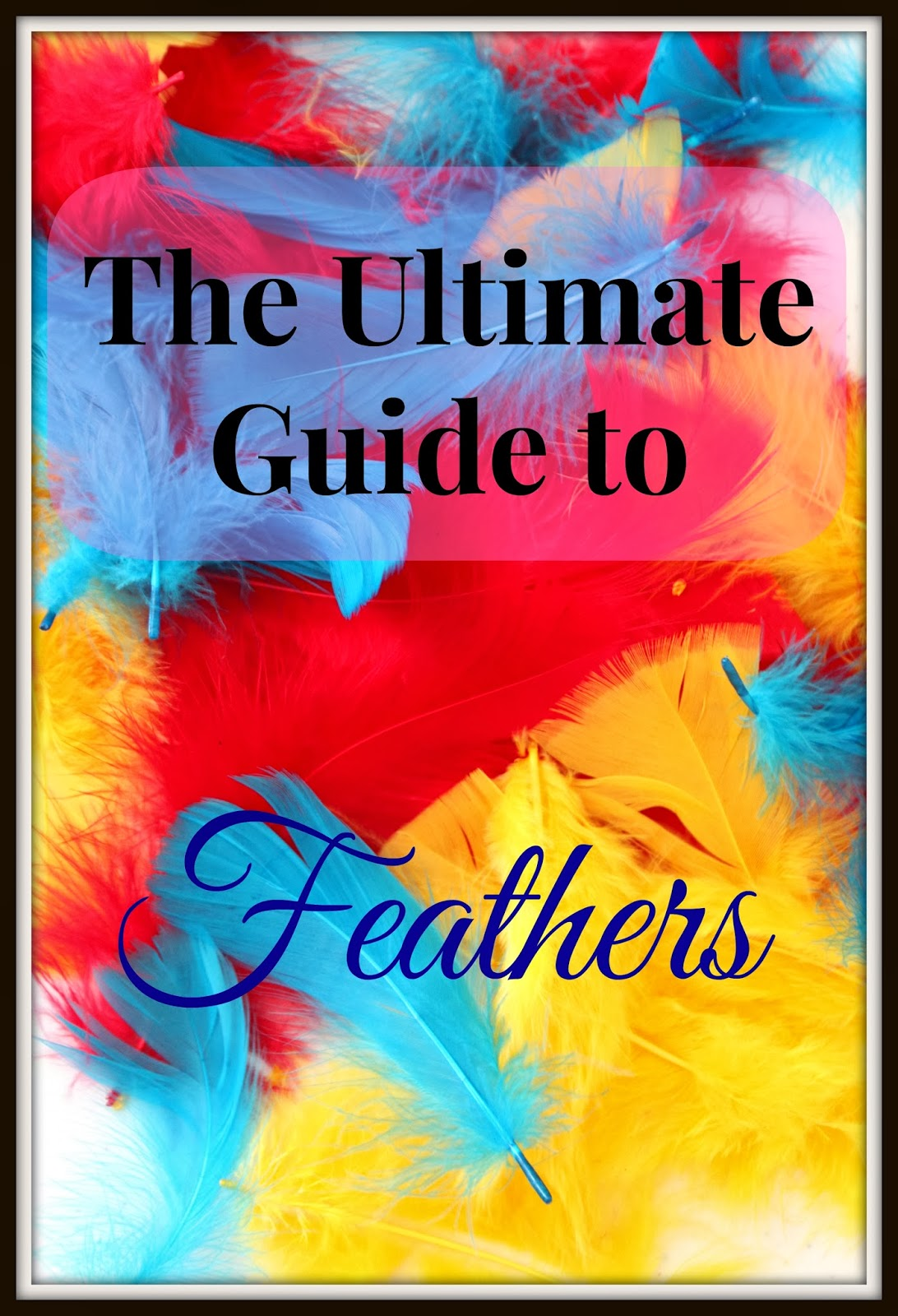 The Ultimate Guide To Feathers And Our Dream Catcher Craft Juggling With Kids