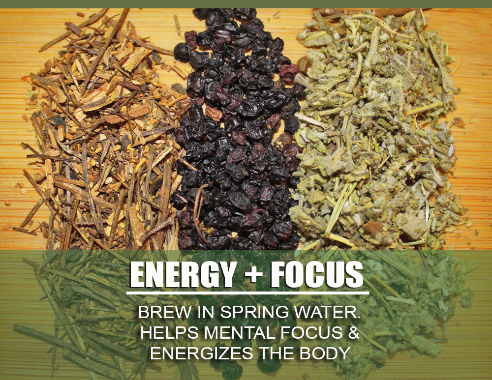 ENERGY FOCUS GRAPHIC