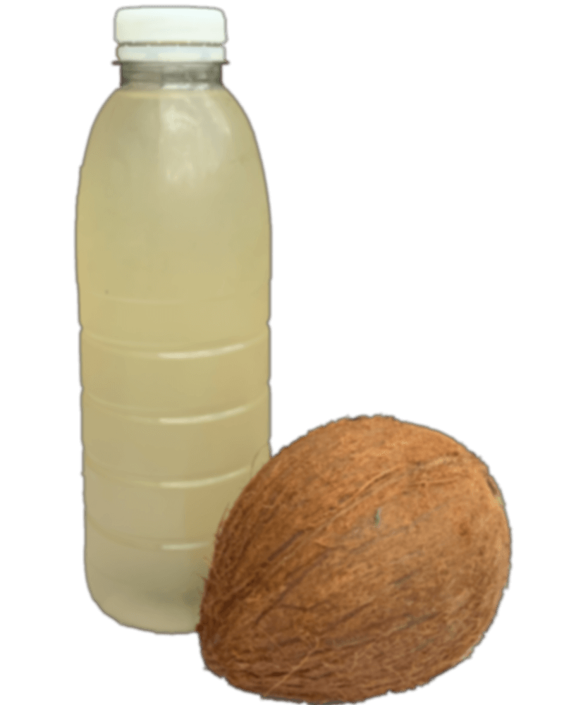 Clear Juice Recipes - Coconut and Bottle with Coconut Juice