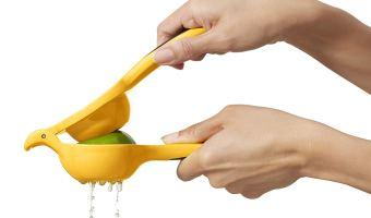 OXO Good Grips Citrus Juicer