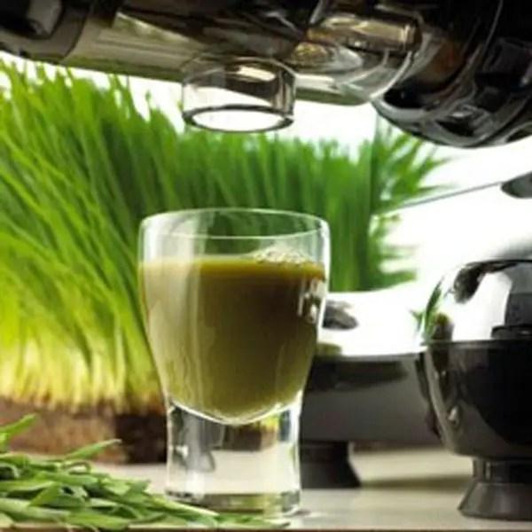 Omega J8006 making wheatgrass