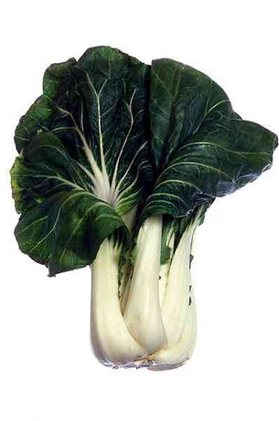 bok choy vegetable colouring pages