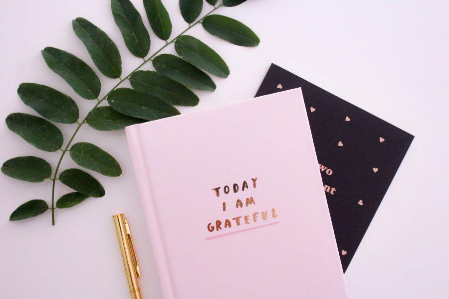 Tenir un carnet de gratitude : comment et pourquoi ? Devenir plus heureuse, épanouie, empathique, et avoir confiance en toi grâce à un simple carnet