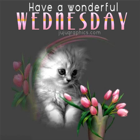 Have A Wonderful Wednesday 2 Graphics Quotes Comments Images Amp Greetings For Myspace