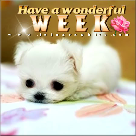 Image result for have a wonderful week