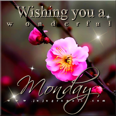 Wishing You A Wonderful Monday Graphics Quotes Comments Images Amp Greetings For Myspace