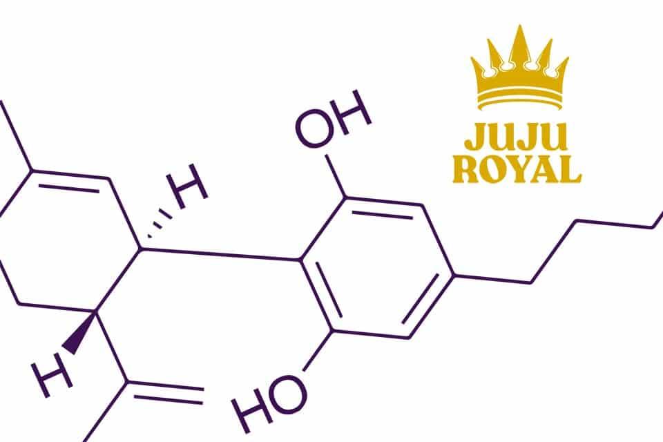JuJu Royal - Cannabinoids 101