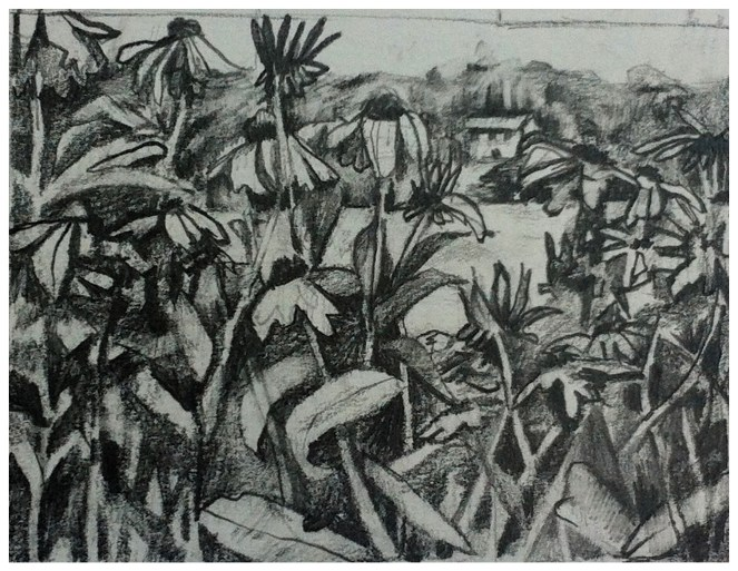 Tonal Pencil drawing of my mother's garden in front of the lake