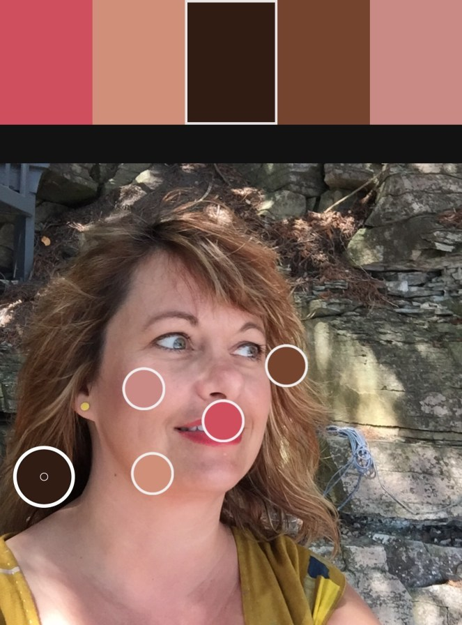 colour picker on Juju's skin tones for makeup